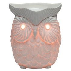 I want this Scentsy Warmer
