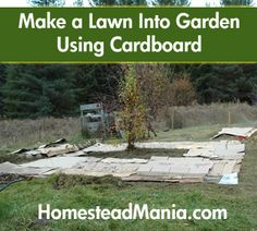 Make a Garden Out of Lawn Using Cardboard Give up the grass! Grow veggies instead. Or wildflowers. Or herbs. Or make a butterfly garden....