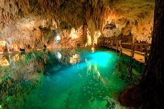 And this is where we're going to be snorkeling: a cenote (a deep, water-filled sinkhole) in Tulum, Mexico.