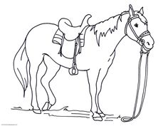 Printable Horse Coloring Pages . 30 Printable Horse Coloring Pages . Free Printable Horse Coloring Pages for Adults Best 28 Baby Coloring Pages, Horse Coloring Pages, Unicorn Coloring Pages, Coloring Pages To Print, Free Printable Coloring Pages, Free Coloring, Coloring Sheets, Colouring, Free Horses