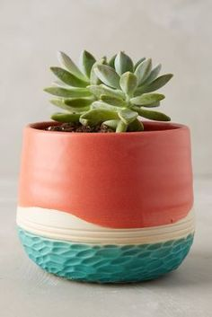 Adorn your outdoor space with planters, plant stands, and plant pots to hold your gorgeous greenery and herbs. Indoor Garden, Garden Pots, Indoor Plants, Painted Pots, Ceramic Planters, Pottery Painting, Houseplants, Flower Pots, Planting Flowers