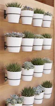 Apostar em uma parede verde composta por vasos facilita na hora dos cuidados, já que as peças podem ser retiradas na hora da rega e da poda