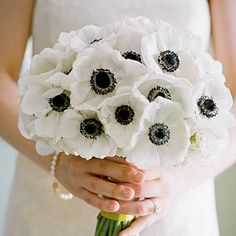 Anemone Wedding Flowers  Colors: white/cream, purple, blue, red, pink Season: early winter, spring, early summer