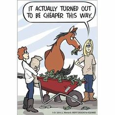 Funny Horse Memes, Funny Horse Pictures, Funny Horses, Funny Dogs, Funny Animals, Cute Animals, Horse Humor, Funny Kitties, Funny Memes