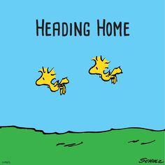 Heading Home for Christmas!