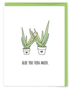 Aloe You Vera Much