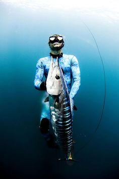 Free Dive Hunters » Design You Trust