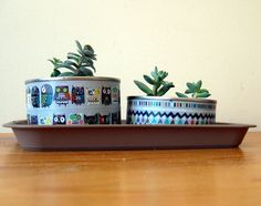 Community post reacting to the creativity prompt via the A Playful Day blog. Love this use of tins to pot succulents. Upcycling. Urban jungles