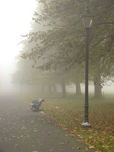 Foggy Day in Sefton Park, Liverpool