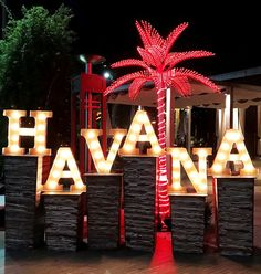 A lit up Havana Night with LED palm trees and marquee letters! 🌟 - A lit up Havana Night with LED palm trees and marquee letters! 🌟 A lit up Havana Night with LED palm trees and marquee letters! Havanna Nights Party, Havanna Party, Event Themes, Event Decor, Party Themes, Cuban Party Theme, Havana Nights Party Theme, Vitrine Design, Party Deco