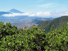 Teneriffalla, Anagan vaellus-reittien kupeessa olevalla näköala-paikalla voi ihastella Pico del Inglesin näkymiä.