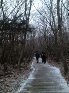 Winter Climbing Mount Hallasan Jeju Island, Mountain Hiking, Climbing, Singapore, Haha, Country Roads, Winter, Outdoor, Winter Time