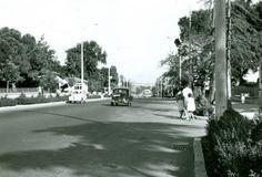 Bağdat Caddesi, 1962. Caddebostan - Suadiye arası.