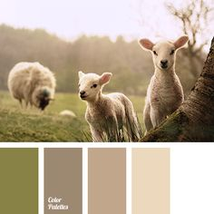 """Warm, bright pastel shades of brown, interacting with human psyche, relax and calm down your senses. These """"ecologic"""", natural colors will look beautiful i."""