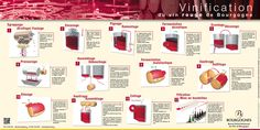 Image result for les aromes du vin poster