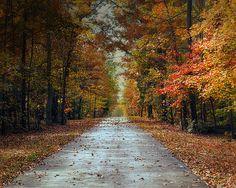 Changing Season 2 - Autumn Landscape