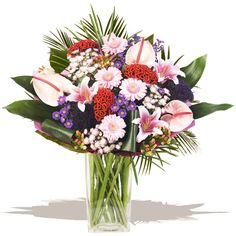 Elegance  Elegance is a stunning combination, a luxury hand-tied bouquet of tropical pale pink Anthuriums, red Celosia, pink Oriental Lilies infused with a contrasting selection of contemporary flowers and exotic foliages. This Fresh flower gift is arranged in the hand by our expert florists and beautifully wrapped in coloured tissue and cellophanes. #wedding #flowers Gift Bouquet, Hand Tied Bouquet, Oriental Lily, Bride And Groom Gifts, Flowers Delivered, Fresh Flowers, Pale Pink, Flower Arrangements, Wedding Gifts