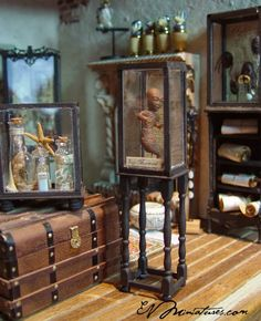 New items available at Spellbound Books and Curiosities..   Lets see..   An Egyptian mummy   Fiji Mermaid   Special cabinet of shrunken ...