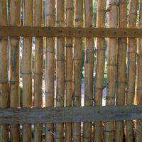 Bamboo fencing adds an Asian feel to any yard and is also a good ecological choice for fencing, as bamboo is considered a renewable resource because of its fast growing rate. There are many different styles of bamboo fencing, from a living bamboo fence to split-reed bamboo rolls that attach to existing fencing or the more work-intensive full-reed...
