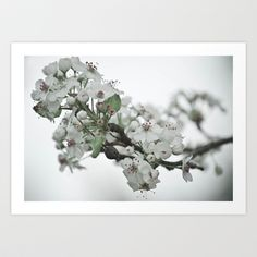 Spring Art Print by Victoria Shapow - $16.64