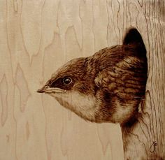 Pyrographic Art by Julie Bender. Ludicrously talented lady. I love the use of the grain...