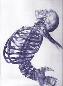 contemporary drawings of human skeletons - Bing images
