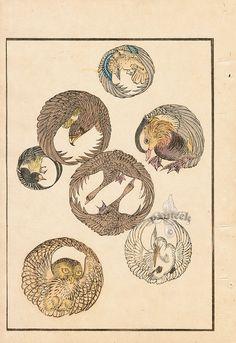 Birds, Owl Crane Eagle from Japanese Design Prints for Decorative Arts 1892