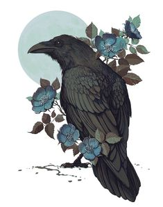 crow art with blue flowers Dessin Tattoo, Crow Spirit Animal, Spirit Animal Tattoo, Crow Tattoos, Tattoo Boy, Raven Wings, Raven Bird, The Raven, Crow Tattoo Design