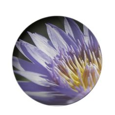 Lavendar Lily Party Plate