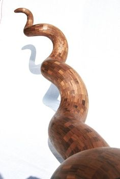 A closer look at the Walnut horn, by Aviad Mishaeli | קרן מעץ אגוז, אביעד מישאלי