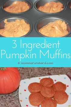 Do you have a picky eater? Are you looking for a low calorie snack or breakfast? Then try this quick and easy 3 ingredient pumpkin muffin recipe. It's toddler approved! Low Calorie Snacks, Low Calorie Recipes, Easy Meals For Kids, Kids Meals, Pumpkin Muffin Recipes, Pumpkin Recipes For Toddlers, Pumpkin Deserts, Toddler Muffins, Baking Cups