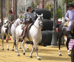 The Feria del Caballo - (Horse Fair) which is held annually in early May in Jerez.