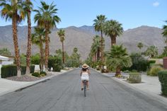 Top Things To Do in Palm Springs — Bon Traveler