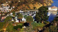 Catalina Island information
