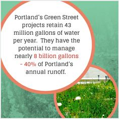 """Source: Rosen, Mike. """"Trees! Watershed Health and Urban Trees Protecting the Investment."""" Environmental Services City of Portland, National Green Infrastructure Conference. (2011)."""