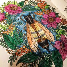 bugs life❤️ #dagdrömmar #hannakarlzon #boracolorirtop #colorindolivrostop…