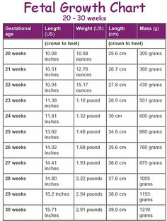 Average fetal length and weight chart | BabyCenter | Baby Stuff ...