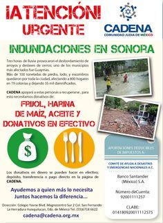 ¡ATENCION! Necesitamos de su apoyo para Sonora, las lluvias intensas han afectando a 800 hogares en 19 colonias y dejando 35 mil damnificados. Necesitamos: DONATIVOS EN EFECTIVO, FRIJOL, HARINA DE MAIZ Y ACEITE  http://www.cadena.org.mx/recaudacion-de-fondos/dona/ ¡Apoyemos a quien mas nos necesita!