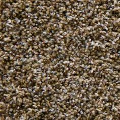Shameless I in Italian Straw Carpet Samples, Carpet Tiles, Color Names, How To Dry Basil, Herbs, Center Stage, Grand Canyon, Ideas, House