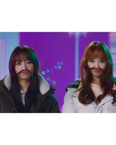 American Teen, Korean American, Kpop Girl Groups, Kpop Girls, Japanese Girl Group, Just Girl Things, 3 In One, Female Singers, The Wiz