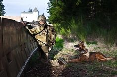 house-of-gnar: A Ranger and his working dog from B Company, Battalion, Ranger Regiment, prepare for actions on the objective during Battalion's Task Force Training at Joint Base Lewis-McCord, Washington (U. Army photo by SPC Michael Spoor) Military Working Dogs, Military Dogs, Brave Animals, Black Shepherd, Us Army Rangers, 75th Ranger Regiment, Us Navy Seals, Loyal Dogs, War Dogs