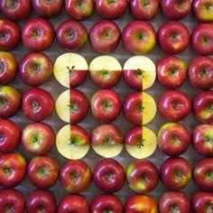geometric-fruits-Sakir-Gokcebag-2