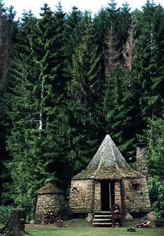 I would love to stay a few nights with Hagrid