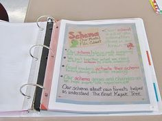 Anchor Charts Organization-take a picture. Duo use:  evidence for teacher portfolio (APPR).