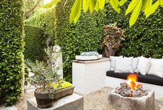 Laid-back fire pit in backyard of home with tall hedges