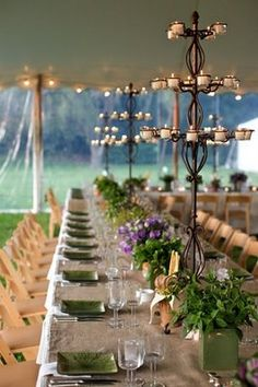 potted reception flowers