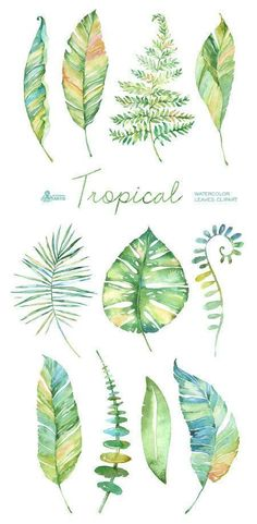 Tropical watercolor leaves. Handpainted clipart por OctopusArtis:
