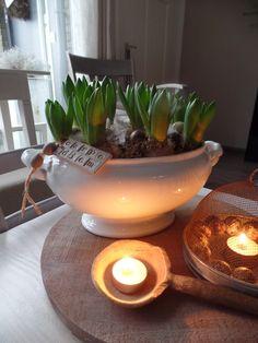 Een oude schaal gevuld met hyacinthen....