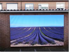 """Sindskort te verkrijgen via www.tuinposteropmaat.nl een tuindoek gespannen op een houten frame. Op deze manier creëer je een """"canvas look"""" voor buiten!"""