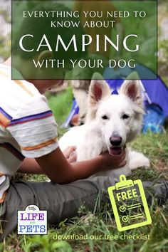 Thinking of bringing your dog on holiday with you this year? Here is a complete guide (including a free checklist) to camping with your dog in the UK. Also including information about costs and recommendations for places to visit. Many UK campsites will happily allow dogs, but it is important to check before arriving as well as review all the campsite rules and think about everything you're going to need to bring for your pooch. Puppy Care, Dog Care, Dog Travel, Travel Tips, Uk Campsites, Food Dog, Cat Health Care, Living With Dogs, Hiking Dogs